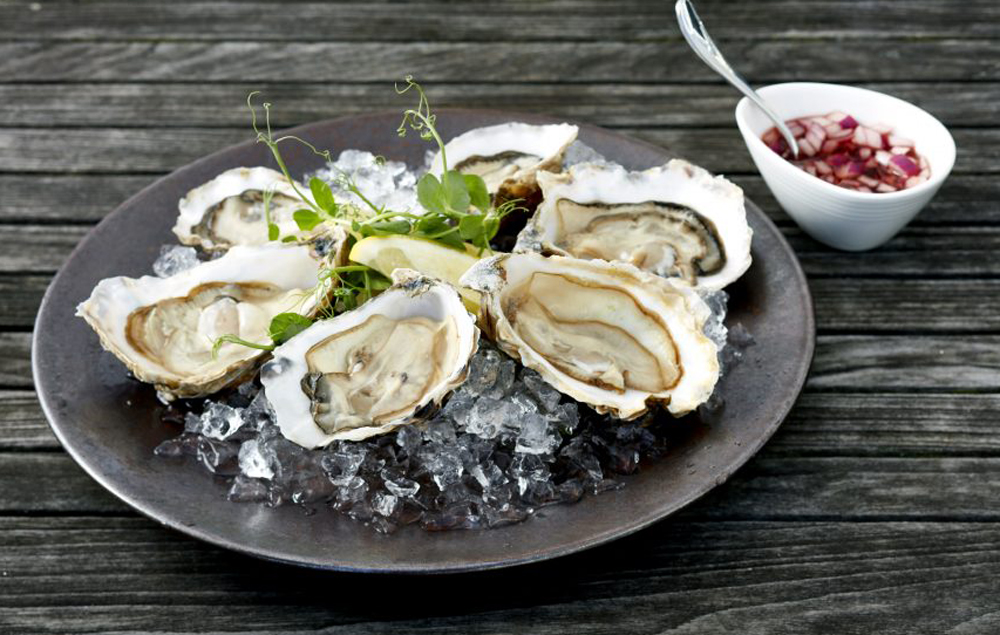 Oysters at St Enodoc Hotel Restaurant