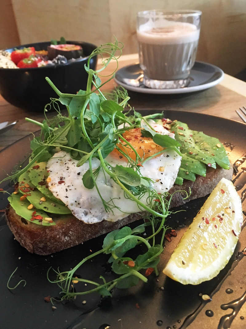 Egg and avocado breakfast at Newquay cafe Box and Barber