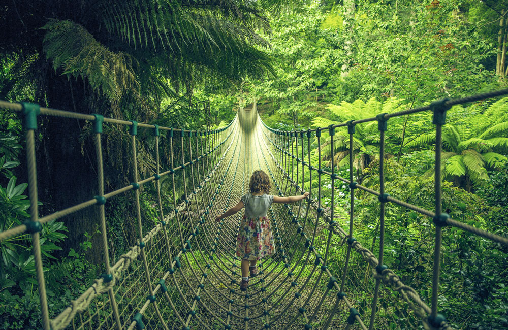 Rope Bridge at The Lost Gardens of Heligan Cornwall